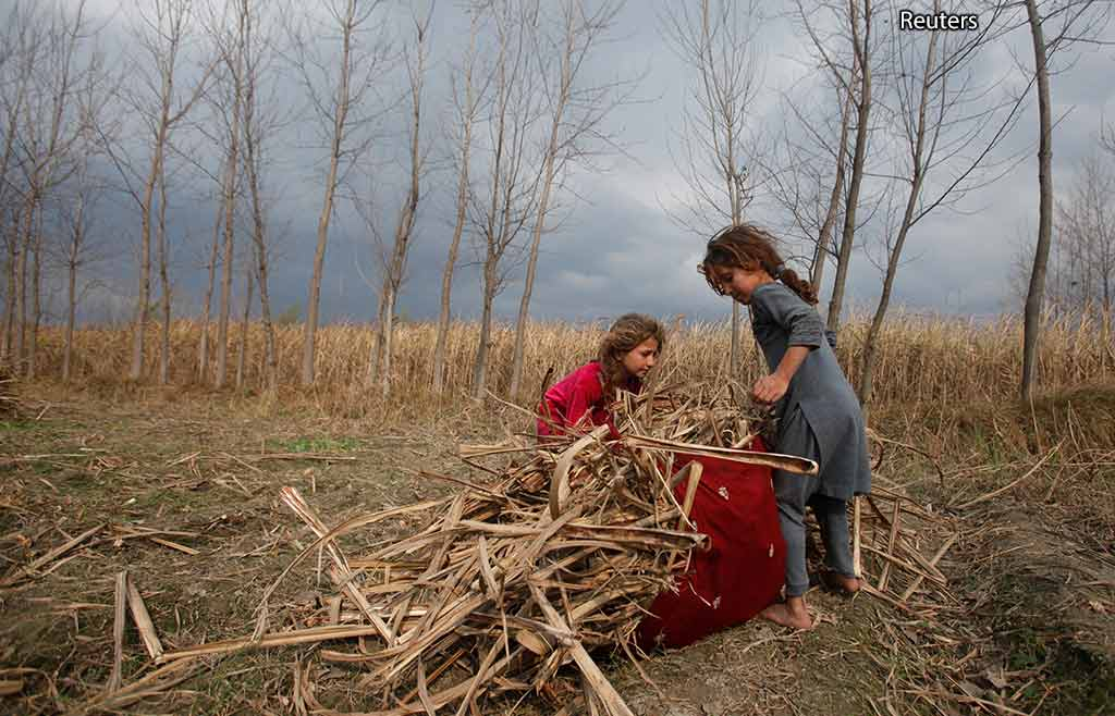 Пакистанские девочки